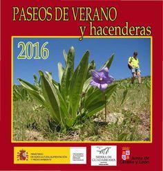 Naturaleza y Voluntariado Ambiental: El Magrama oferta su Programa de Paseos de Verano ...