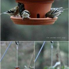 Ideas and Plans for DIY bird houses Bird Houses Diy, Fairy Houses, Diy Bath Mats, Old Tea Pots, Bird Boxes, Diy Chicken Coop, Fun Diy Crafts, Gardening, Acoustic Panels