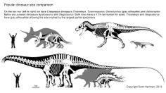 #dinosaurs: size comparison. By Scott Hartman.