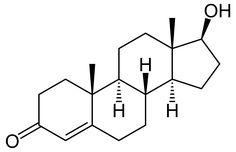 TESTOSTERONA: ¿Cuál es la importancia de esta hormona? - http://citaid.com.mx/testosterona-que-debemos-dominar-de-esta-hormona/