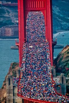 vintage everyday: Pictures of the Golden Gate Bridge 50th Anniversary