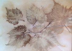 Grape leaves on Archers watercolor paper: Nancy Gher