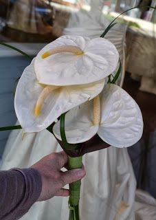 Fall Weddings - Affordable Flower Options | Sending Smiles ~ Big is not always better, sometimes a few dramatic flowers is all you need for your #brides #maids #bouquets www.perfectweddingflowers.com