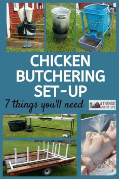 Getting ready to butcher chickens? Let me show you our chicken butchering set up, and show you seven things you will need to make your job easier. Raising Meat Chickens, Raising Farm Animals, Pet Chickens, Chicken Plucker, Chicken Processing, Chicken Tractors, Chicken Breeds, Chicken Coops, Chicken Runs