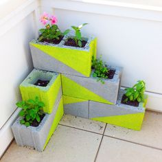 Add a splash of colour to the backyard with this neon concrete block planter!