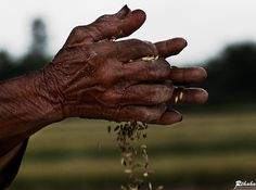 Old woman hands by Réhahn Photography, via 500px