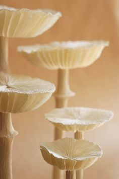 How to make folded crepe paper honeycomb mushrooms