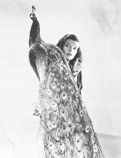 Katharine Hepburn with peacock. 1960s.   Photographer: Cecil Beaton