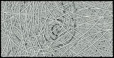 Curved Lines, Science Art, Google Images, Maine, Content, Abstract, Artwork, Summary, Work Of Art