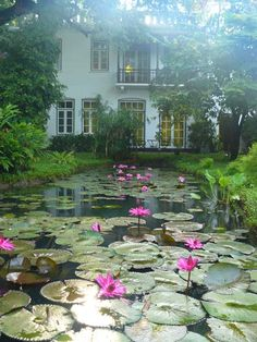 Water lily a must if we have pond How Beautiful, Beautiful Gardens, Beautiful Homes, Beautiful Places, Amazing Gardens, Lily Pond, Water Features In The Garden, Garden Pond, Lilly Garden
