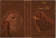 You and Your Owl FULL cover by ~Lost-in-Hogwarts on deviantART