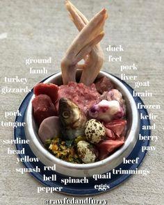 Forward to a friend reorganized healthy dog food Dog Raw Diet, Raw Food Diet, Raw Dog Food, Pet Food, Homemade Dog Treats, Healthy Dog Treats, Dog Treat Recipes, Raw Food Recipes, Raw Feeding For Dogs