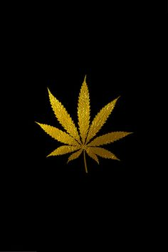 The Killer Kung Fu Wolf Bitch Weed Wallpaper Marijuana Backgrounds