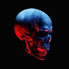 Skull Light Study, Skull Artwork, Just Beauty, Music Mix, Beautiful Artwork, Skulls, Art Reference, Darkness, Graphic Art