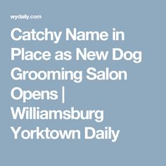 Catchy Name in Place as New Dog Grooming Salon Opens | Williamsburg Yorktown Daily