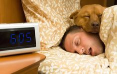 Počítat ovečky netřeba. Naučte se metodu 4-7-8 a usnete během chvilky Trouble Sleeping, Sleeping Dogs, Dog Mems, Rem Sleep, National Sleep Foundation, When You Sleep, Sleeping Through The Night, Bedtime Routine, Sleep Apnea