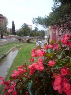 Foto de riselo: Barbastro, ciudad episcopal. - ciudades