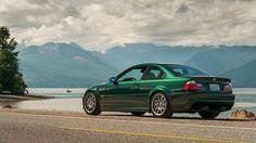 M3 e46 E46 M3, Good Color Combinations, Bmw M4, Bmw 3 Series, Oxford, Green, Cars, Cinnamon, Track