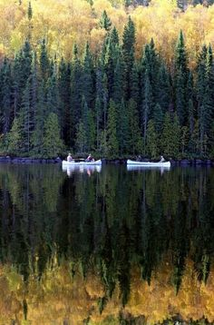 Gorgeous reflection ... Boundary Waters Canoe Area ... Photo by riczkho ...