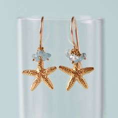 Two is better than one when it comes to the starfish, one of nature's most interesting creatures!