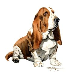 BASSET HOUND Dog Art Print Signed by Artist DJ Rogers via Etsy