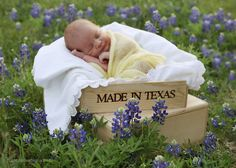 Baby portrait in bluebonnets made in Texas...We will DEFINITELY be doing this! OMG This amazing!! -am