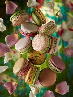 Beautiful Macarons shot #salivating #foodporn