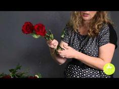 Blog of Mayesh Wholesale Florist - February 2015 Wholesale Flower Product Showcase: Valentine's Day Roses & More