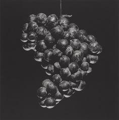 Grapes, 1985, by Robert Mapplethrope. Gelatin silver print Image: 38.5 x 38 cm…