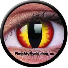 Dragon Eyes Crazy Contact Lenses Pair - PimpMyEyes.com.au | PimpMyEyes