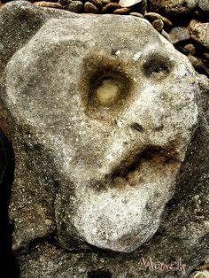 not a funny face, really, but a face in its death throes perhaps