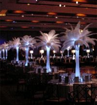 Acolyte Submersible Floralyte White - Set of 10 - LED Lights - Feather centerpieces - Yacht wedding Wedding To Do List, Low Cost Wedding, Budget Wedding, Michigan Wedding Venues, Chicago Wedding Venues, Discount Wedding Invitations, Luxury Wedding Invitations, Will Ferrell Wedding Crashers, Ostrich Feather Centerpieces