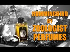 FragBoy Stewie Reviews Hummingbird by Zoologist Perfumes Review - YouTube