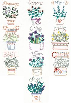 """Herbs"" it's time to get started planting herbs, so why not stitch some too? Includes basil and 9 more, all thyme favorites!"