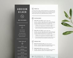 1000 images about portfolio ideas on pinterest creative cv