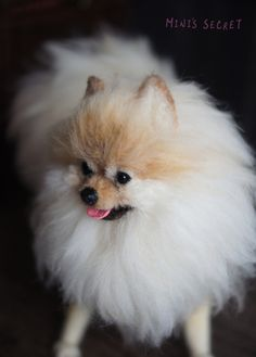 Needle Felted Dog Needle Felted Animals, Felt Animals, Cute Animals, Needle Felting Tutorials, Felt Dogs, Wet Felting, Soft Sculpture, Felt Art, Pomeranian