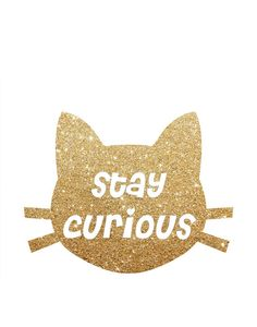 Stay Curious Golden Print Cat Print Printable by GEyesPhotography Nursery Prints, Quote Prints, Cat Art, Printable Art, Wall Art Decor, Holiday Gifts, Etsy Seller, Etsy Shop, Creative