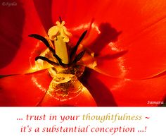 ... trust in your #thoughtfulness ~ it's a substantial #conception ...!