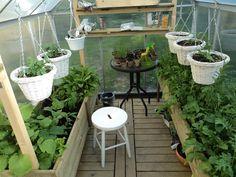 Ruoka, kotoilu, lapset, käsityöt Patio, Outdoor Decor, Plants, Home Decor, Decoration Home, Room Decor, Plant, Home Interior Design, Planets