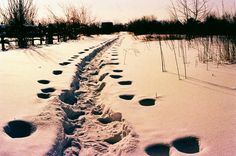 From Russia With Love: A Gallery of Photos From Russian Lomohomes - Lomography #Lomography