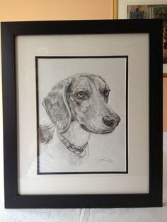 Graphite drawing of Darwin, Beagle