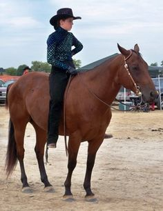 10 Tips for Buying a Horse