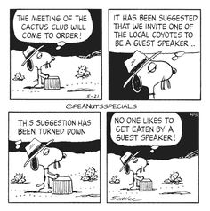 First Appearance: May 21st, 1984 #peanutsspecials #ps #pnts #schulz #spike #meeting #cactusclub #order #invite #local #coyotes #guest #speaker www.peanutsspecials.com