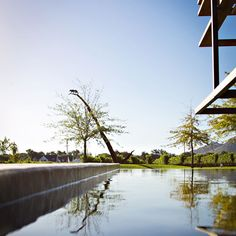 Leopard's Leap Vineyards - have a look at our website for wine, restaurant and event information. South African Wine, Leopards, Travel Bugs, Beautiful Landscapes, Stuff To Do, Vineyard, The Neighbourhood, Around The Worlds, Places