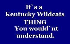 Kentucky Wildcats