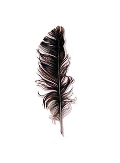 Your place to buy and sell all things handmade Black And White Birds, Black And White Artwork, Arches Watercolor Paper, Watercolor Feather, Crow Feather, Feather Print, Feather Tattoos, Body Art Tattoos, Crow Tattoos