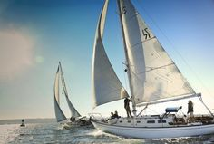 Book your tickets online for San Diego Sailing Tours, San Diego: See 355 reviews, articles, and 169 photos of San Diego Sailing Tours, ranked No.15 on TripAdvisor among 143 attractions in San Diego.