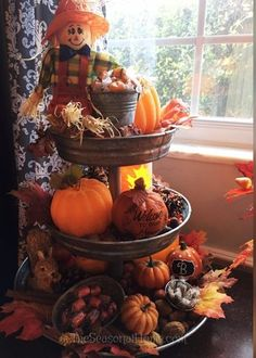 fall-server_full - Decorative Tray - Ideas of Decorative Tray - fall-server_full Diy Halloween Decorations, Thanksgiving Decorations, Fall Decorations, Seasonal Decor, Galvanized Tiered Tray, Galvanized Steel, Autumn Decorating, Mantle Decorating, Decorating Ideas