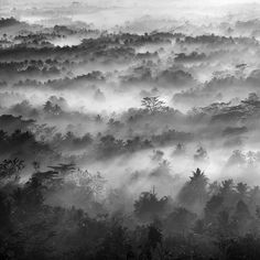 """The misty of Borobudur """"the history never end"""" ... on Behance"""