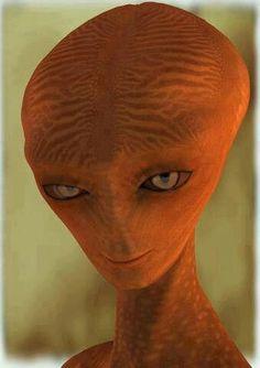 the hhhmmm interesting face alien Arte Alien, Alien Art, Aliens And Ufos, Ancient Aliens, Crop Circles, Alien Creatures, Fantasy Creatures, Bigfoot Documentary, Alien Theories